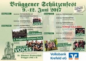 Plakat Schützenfest 2017